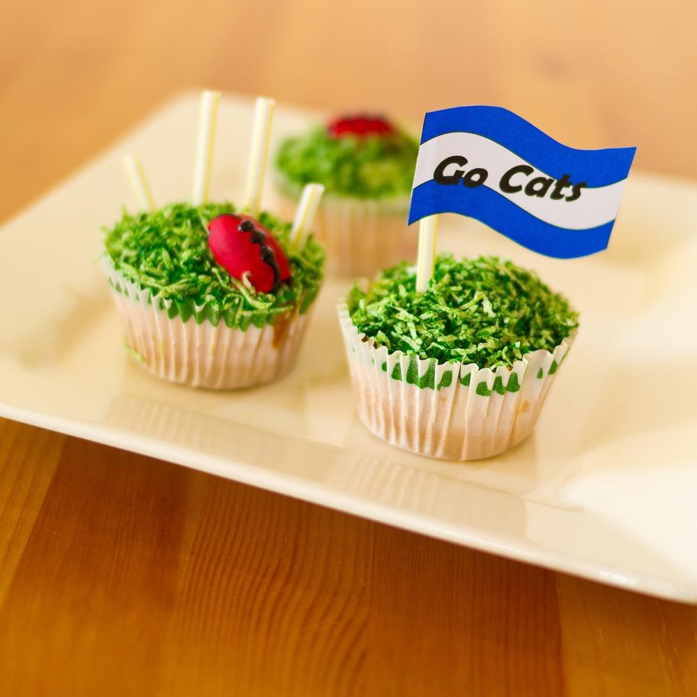 Footy Cakes-1 (3).jpg