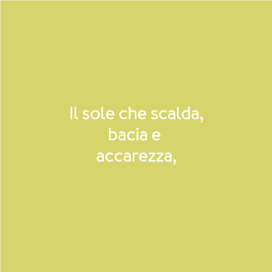 SC-P20-ScrittaAlbero.jpg
