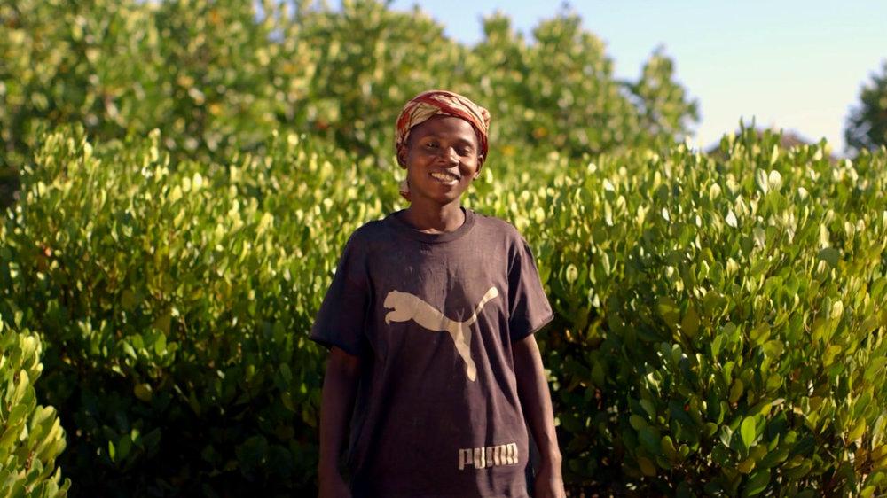 Hack Climate Madagascar Mangrove Trees 6.jpg