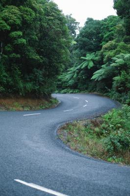 Self Drive Vacations in New Zealand