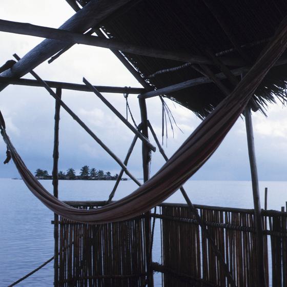 Panamanian Paradise: Bocas del Toro