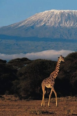 Planning A Trekking Safari in Tanzania