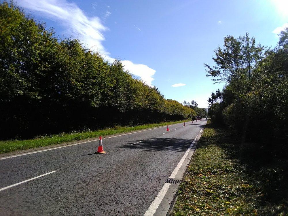 The big hedge - before….