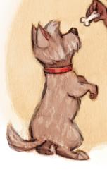jessicawarrickdog