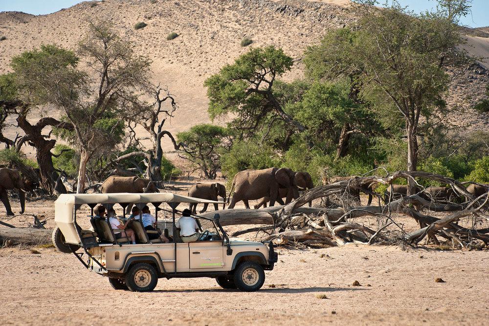 Enactus Safari Travel Namibia 33.jpg