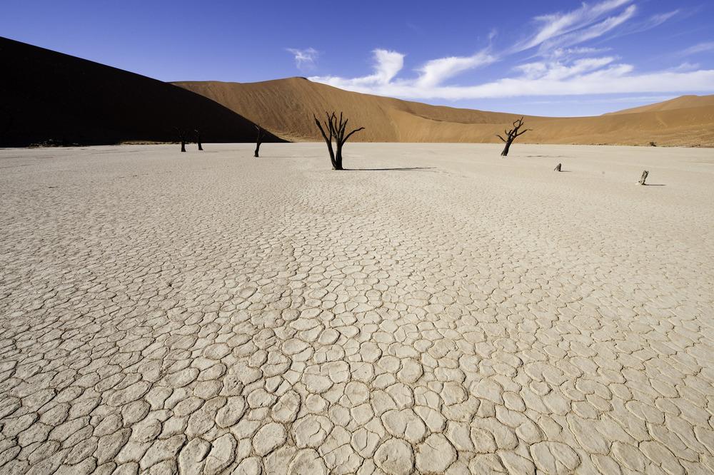 Enactus Safari Travel Namibia 49.jpg
