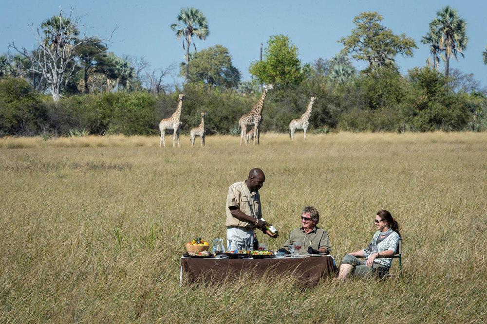 Enactus-safari-botswana-9.jpg