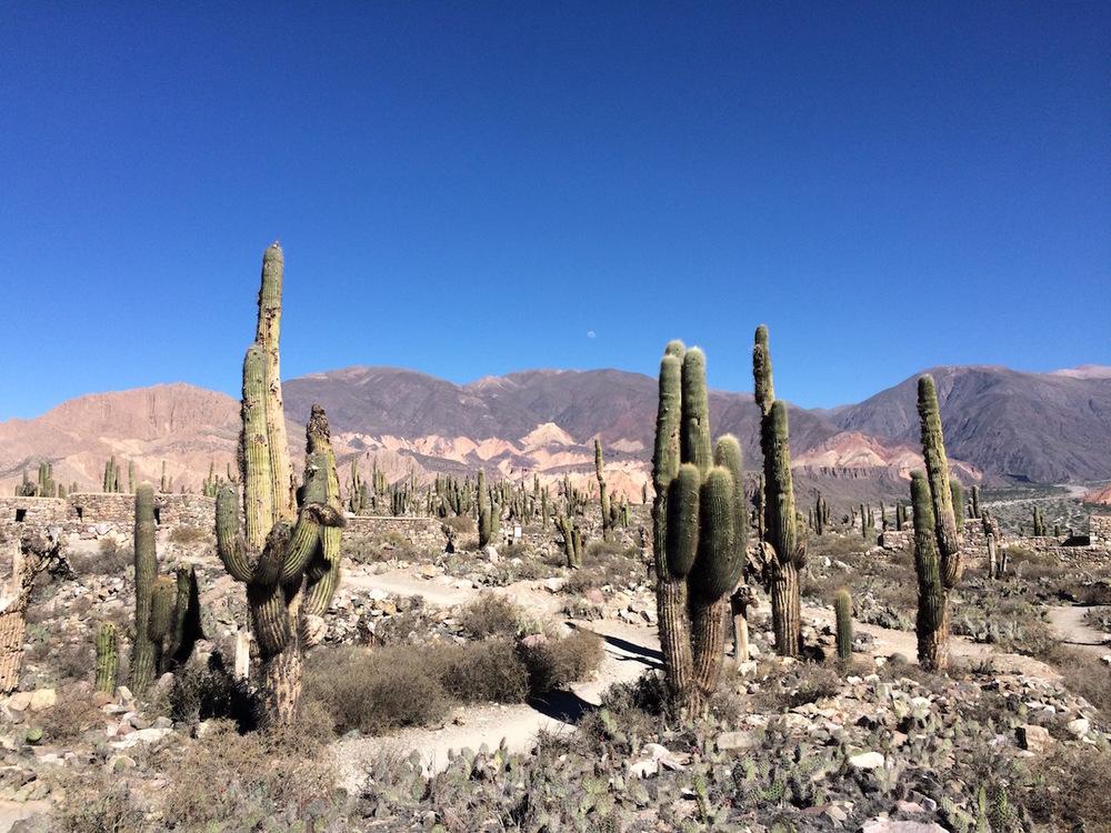 Exploring jujuy, argentina