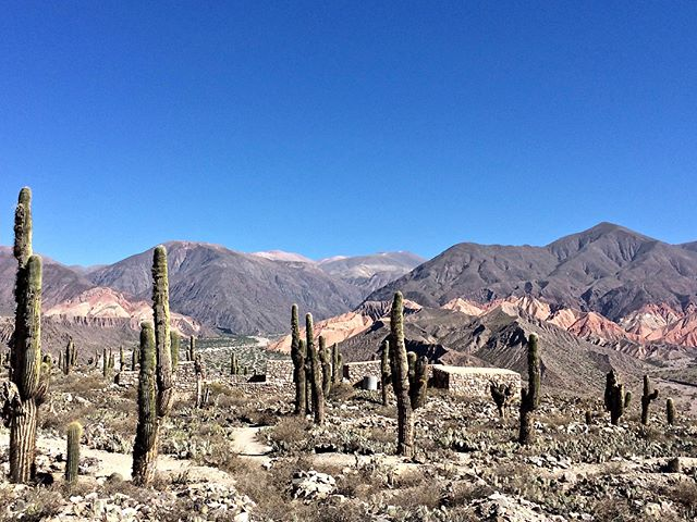 Jujuy, the most northern, and my favourite, part of Argentina 🇦🇷❤️