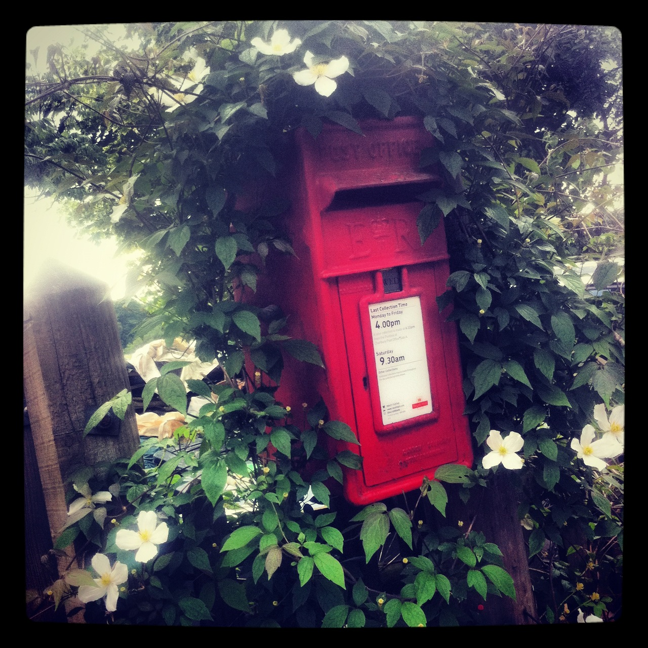 Beauty in the everyday     Today I took a quick stroll to the postbox at the bottom of our lane and found it adorned in the most beautiful white clematis. With deep green leaves and yoke-like centres to the flowers, set against the pillarbox red, it really was a sight to behold.     A welcome distraction in a jam-packed day of work that put a little smile on my face and a spring in my step.