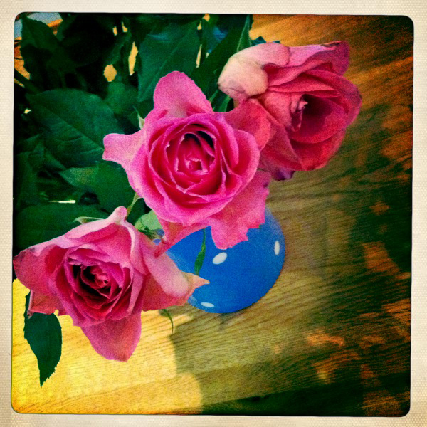 Roses in a vintage blue spot jug, a little vignette of my kitchen table