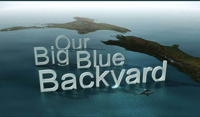 2014 A resurrection of the extremely popular Wild South strand, Our Big Blue Backyard is a comprehensive survey of the marine life of New Zealand. Working throughout the development and production process, Andrew played a key role in the creation of the pitch, research and fieldwork for the show.