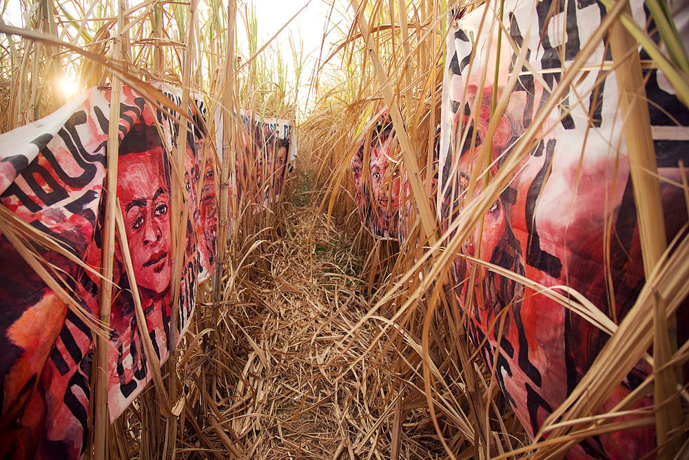 Empalagoso (Saccharine): The Chichigalpa Portrait Project, The Chemically Dried Cane Installation. Photo courtesy of Tom Laffay.