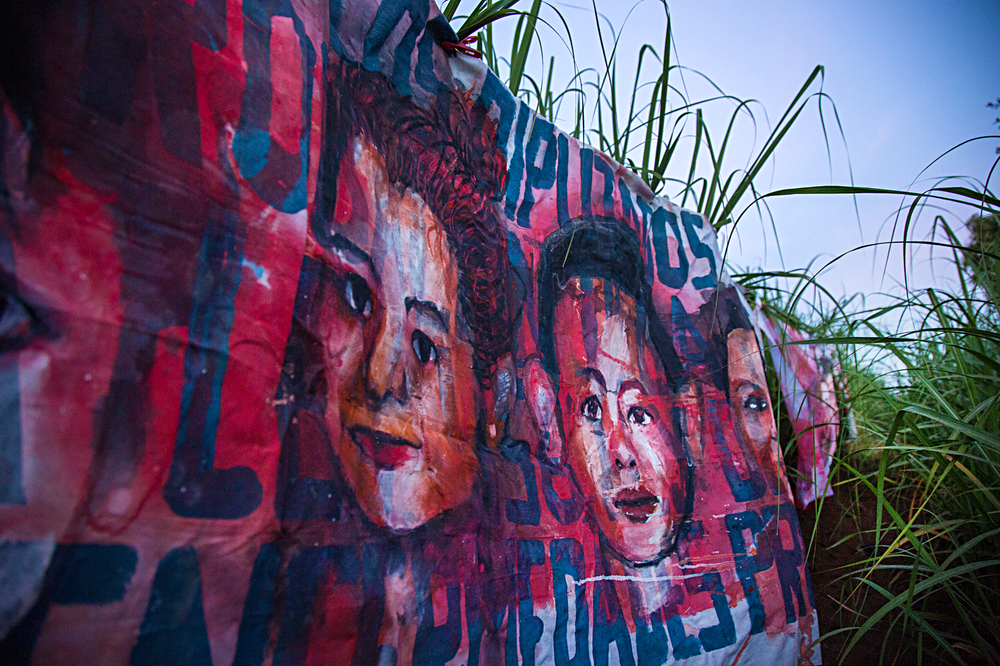 Empalagoso (Saccharine): The Chichigalpa Portrait Project, Green Cane Installation. Photo courtesy of Tom Laffay.