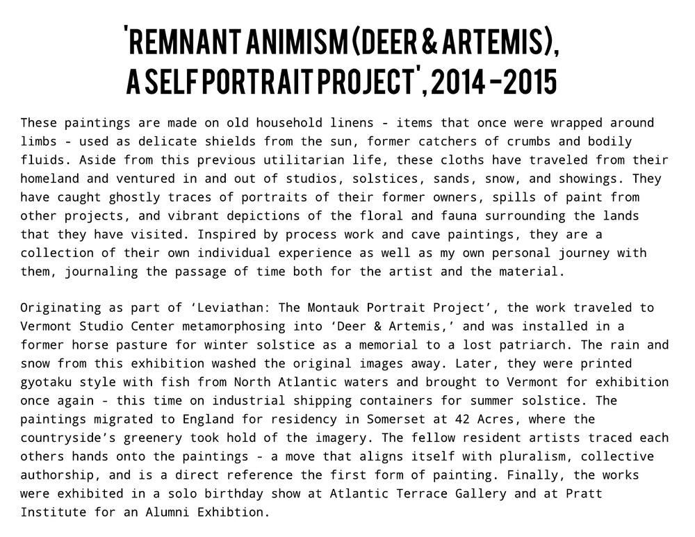 Remnant Animism (2).jpeg