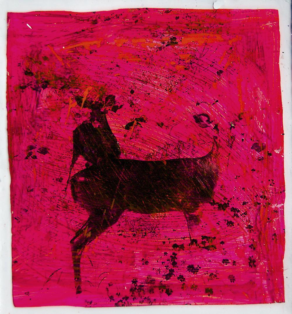 Deer Diary crop.jpg