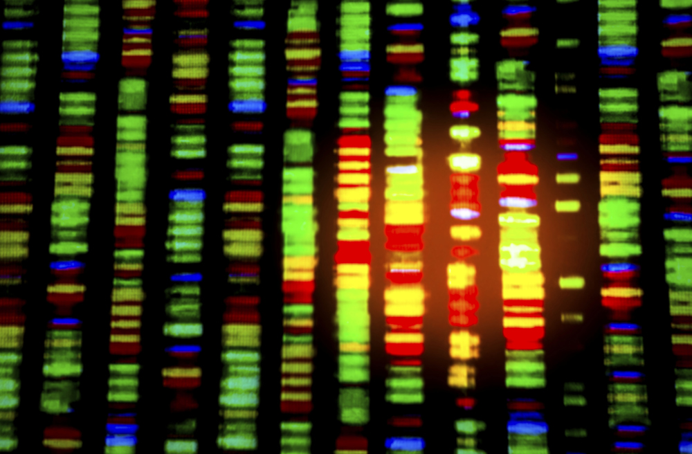 DNA Sequence (Thinkstock)