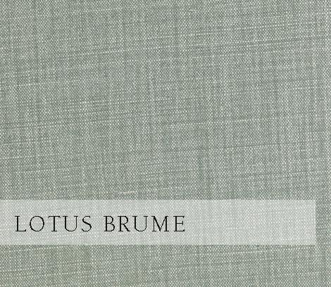 Lotus-Brume.jpg