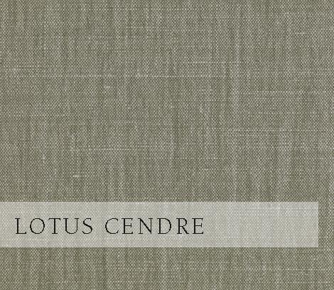 Lotus-Cendre.jpg