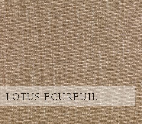 Lotus-Ecureuil.jpg