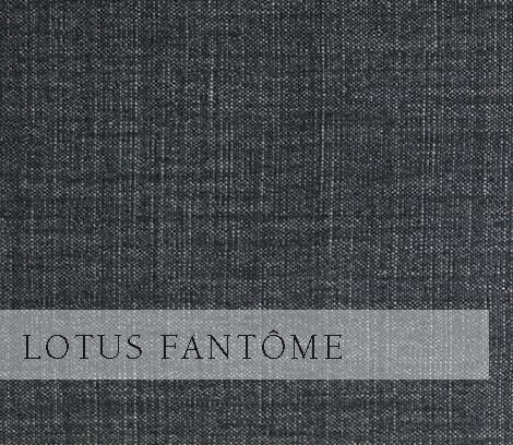 Lotus-Fantôme.jpg