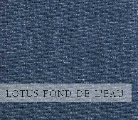 Lotus-Fond de L'eau.jpg