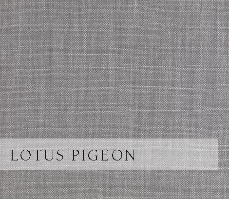 Lotus-Pigeon.jpg
