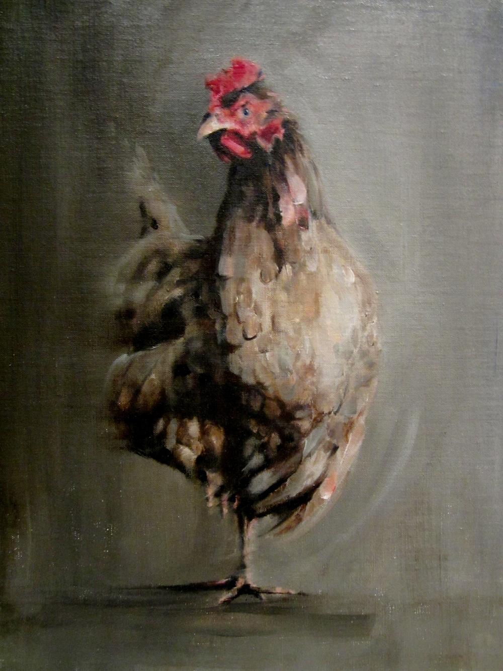 Grumpy Chicken