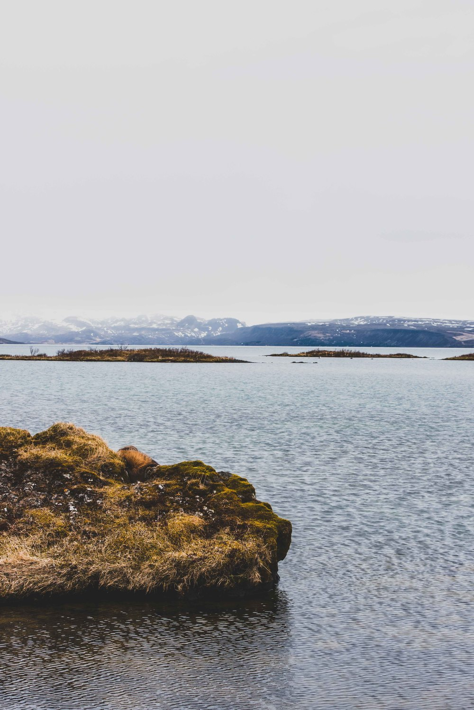 Joe Shutter Iceland Tectonic Plate Fissure Portrait-3.jpg