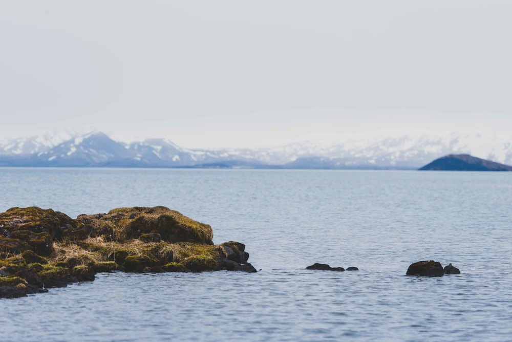 Joe Shutter Iceland Tectonic Plate Fissure Portrait-4.jpg