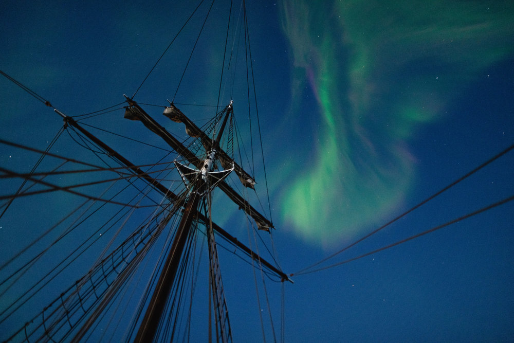 Opal  under the northern lights in Greenland