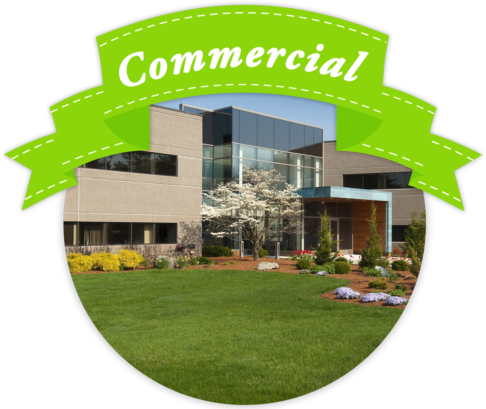 Landscaping services redding ca citilawns llc for Commercial landscaping services