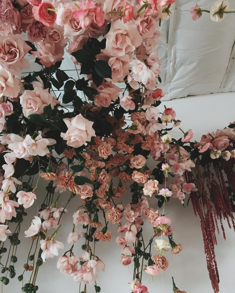 300_carnations__200_roses__100_peonies__and_I_lost_count_after_that..jpg