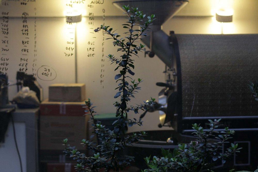 cafés-cuarta-A.jpg