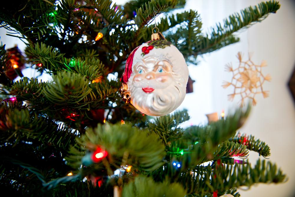 laura-bear-favorite-ornaments.jpg
