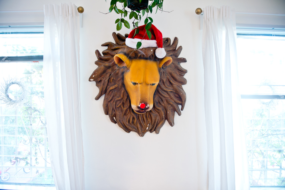 laura-bear-small-christmas-lion-2015.jpg