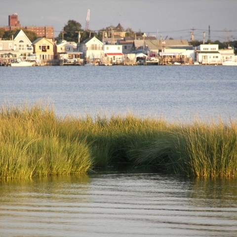 Bay-and-Beach-Channel.jpg