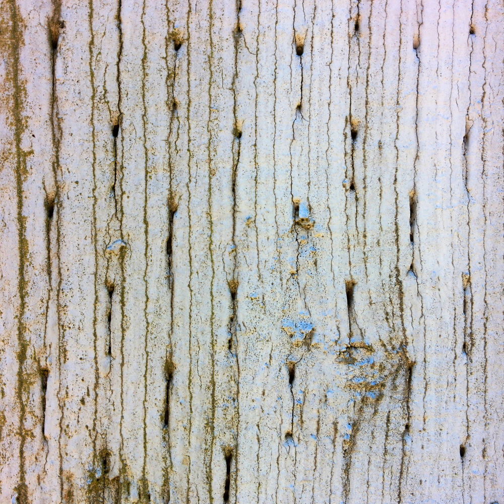 White Paint Peeling Off Fence