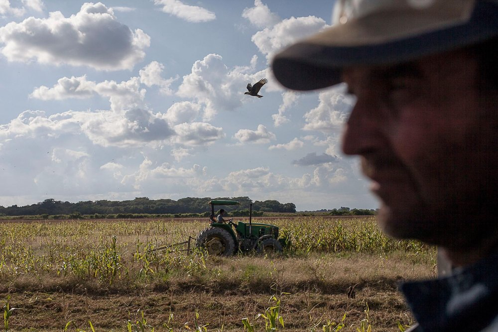 Bloomberg: Venezuela's Farmland Sits Barren During Hunger Crisis