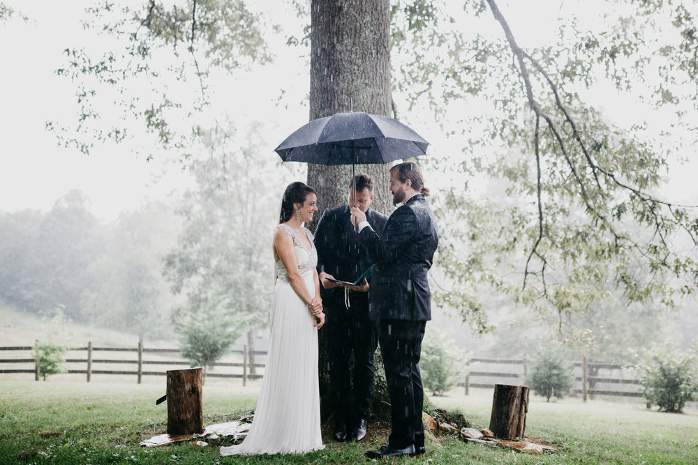Rainy Wedding Tree