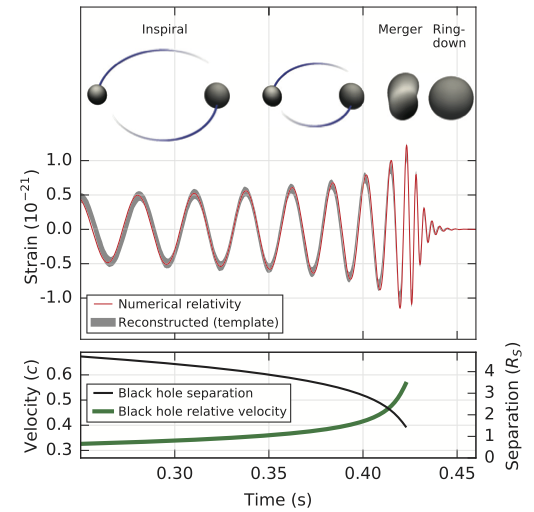 Measurement of merger event, from the LIGO Physical Review Letter. Top is a sketch of the location of the two black holes as time goes on, center is the actual measurement (strain over time), and bottom is the inferred velocity and separation between the two black holes