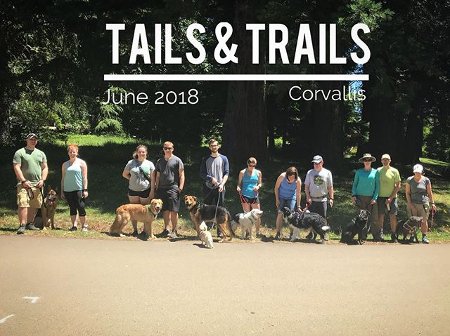 Thank you all for coming to Tails and Trails Hiking Group today, we had such a good time on our relaxing hike! Be sure to be on the lookout for the July and August hikes, will be posting soon!#oregondogs #hikingwithdogs #americanshepherd #pnwdogs #corvallis #gsdofinstagram #bullybreedsofinsta #bordercolliesofinstagram #muttskickbutt #onleashadventures #happydogs #packwalk #dogadventures