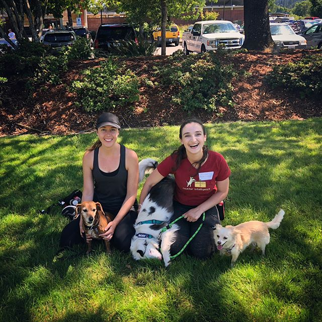 Miriam and I spent this past weekend with @grishastewart and @jordanwshelley learning about their techniques to train reactive and fearful dogs! We even brought Sable, Whisper and Josie along to help out. If you have a fearful or reactive dog, our Walk|Train Program would be a great fit, check out our website for more info! #neverstoplearning #reactivedog #corvallisdogrunner #corvallis #philomath #oregondogs #pnwdogs #dogsoforegon #dogtrainerslife