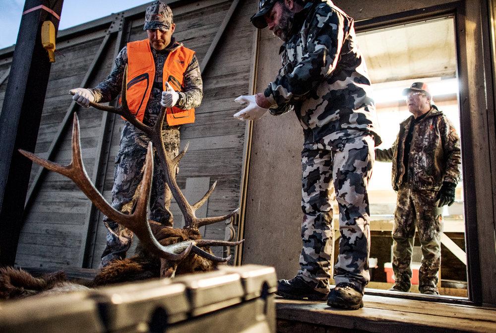 Montana Elk Hunting Photography