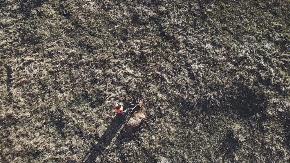 rich-drone.jpg