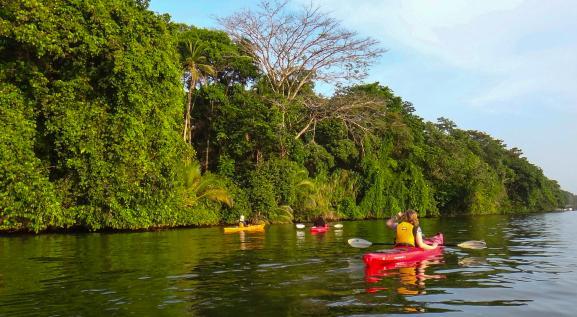 Tortuguero canals.jpg