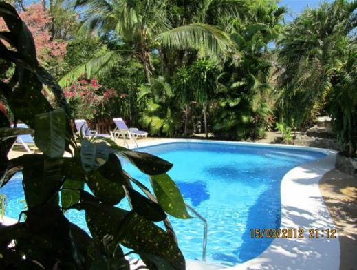 hotel Belvedere pool.jpg