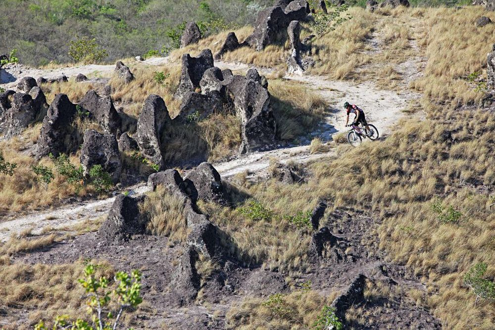 Costa Rican mountain bike Park.jpg