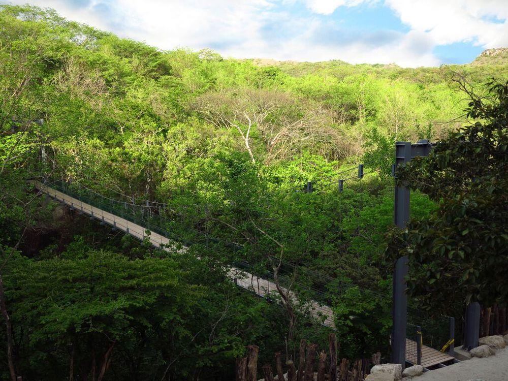 Hike Costa Rica.jpg