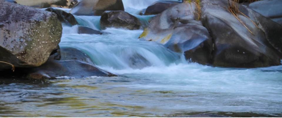 rio chirripo Lodge5.jpg